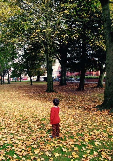 Autumnal eoin
